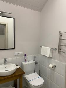 A bathroom at Chudodiyevo Park- Hotel