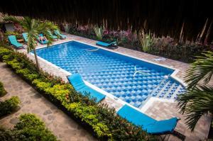 Ein Blick auf den Pool von der Unterkunft Primaluna Beach Hostel oder aus der Nähe