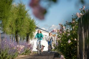 Biking at or in the surroundings of Camping Veld & Duin