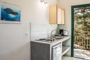 A kitchen or kitchenette at Herodotos Studios