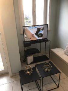 TV/Unterhaltungsangebot in der Unterkunft Residentie Da Vinci Middelkerke