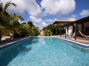 Het zwembad bij of vlak bij Kas Vis