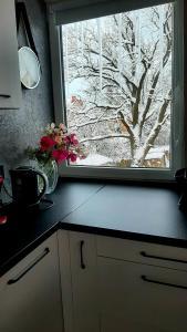 A kitchen or kitchenette at Апартаменты с отдельным входом
