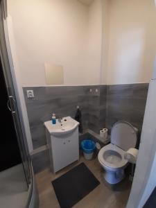 Koupelna v ubytování Pension U Johnů