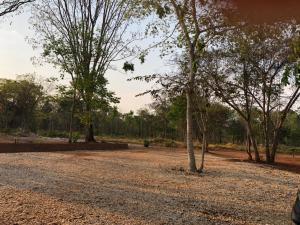 Jardín al aire libre en CASA CANTO DO JAÓ