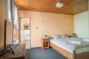 Postel nebo postele na pokoji v ubytování Hotel Plesivec