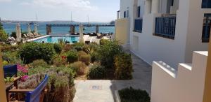 Θέα της πισίνας από το Kouros Village ή από εκεί κοντά