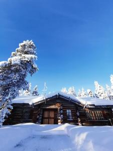 Saarikejo Huskylodge talvella