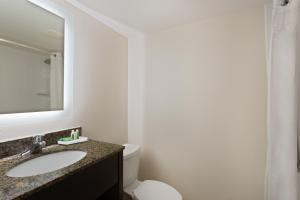 A bathroom at Holiday Inn & Suites Across From Universal Orlando