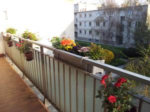 Balkón nebo terasa v ubytování Apartment24-Schoenbrunn