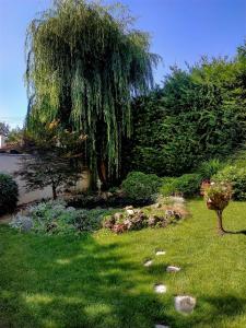 A garden outside Art Hotel Nirvana