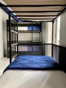 Litera o literas de una habitación en Oasis Backpackers' Hostel Sevilla & Coworking