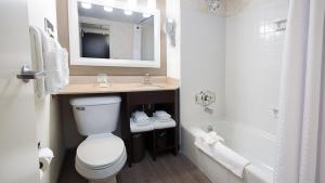 A bathroom at Holiday Inn Downtown Rochester, an IHG hotel