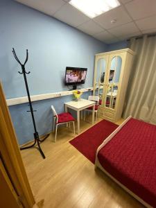 TV a/nebo společenská místnost v ubytování Hotel & Hostel EKOnom v Otradnom