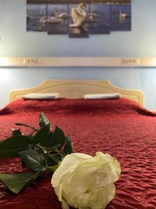 Postel nebo postele na pokoji v ubytování Hotel & Hostel EKOnom v Otradnom