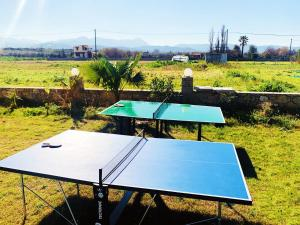 Table tennis facilities at Martimi Apartments or nearby