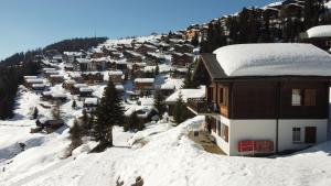 Chalet Foresta im Winter