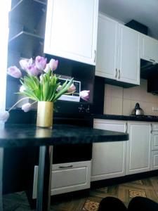 Кухня или мини-кухня в Apartment u Korolevskikh vorot
