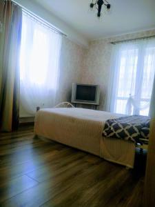 Телевизор и/или развлекательный центр в Apartment u Korolevskikh vorot