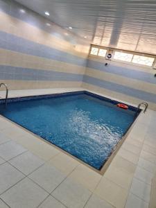 المسبح في شاليهات دشيل أو بالجوار
