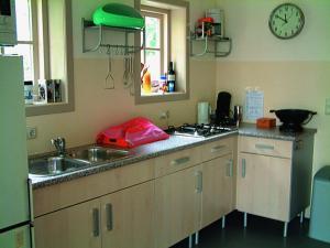 Een keuken of kitchenette bij B&B Abbekerk