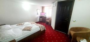 Un pat sau paturi într-o cameră la Complex Caprice-Monteoru