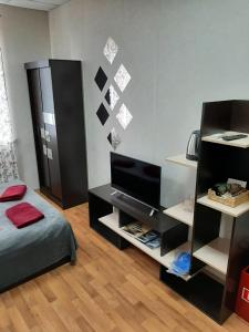 A television and/or entertainment centre at Hostel Star Myakinino