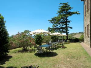 A garden outside Locazione Turistica Villa Caggio - VOL141