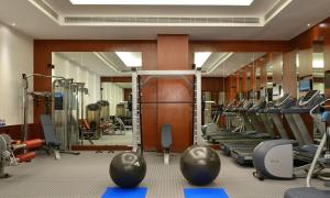 The fitness centre and/or fitness facilities at Park Plaza Chandigarh Zirakpur