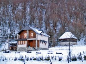 Holiday Home Drijenak during the winter