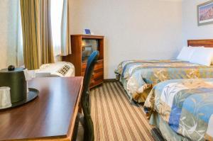 A room at Francisco Bay Inn