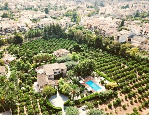 A bird's-eye view of Finca Ca's Curial - Agroturismo - Adults Only