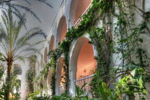 Een tuin van Hotel Hurricane