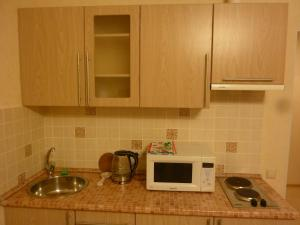 A kitchen or kitchenette at Apartments Krasnogorsk Expo