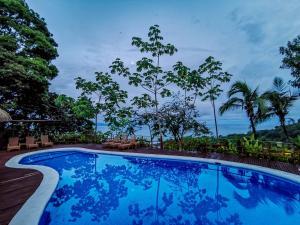The swimming pool at or near Lapa Rios Lodge