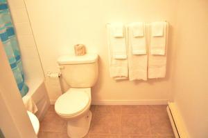 A bathroom at Tulip Motel