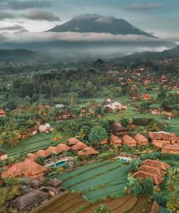 A bird's-eye view of Samanvaya Luxury Resort & Spa - Adults Only