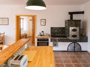 A kitchen or kitchenette at Martinkovice 201 Broumov