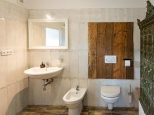 A bathroom at Martinkovice 201 Broumov
