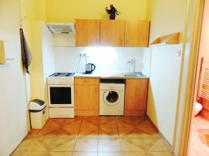 Kuchyň nebo kuchyňský kout v ubytování Apartment at Wenceslas Square