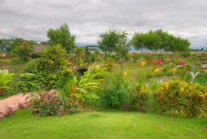 Ein Garten an der Unterkunft Maekok River Village Resort