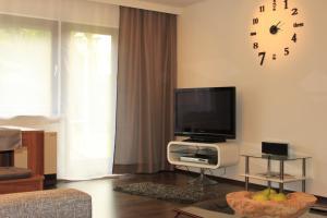 TV/Unterhaltungsangebot in der Unterkunft MS Wiese Apartment