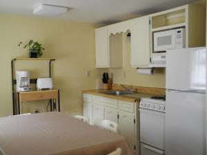 A kitchen or kitchenette at Wilson Lake Inn