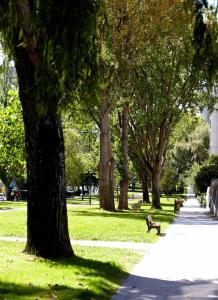 A garden outside Hotel Coia de Vigo