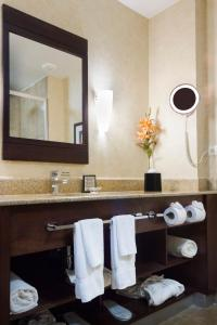A bathroom at Best Western PREMIER Monterrey Aeropuerto