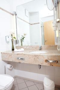 A bathroom at Hotel Flandrischer Hof