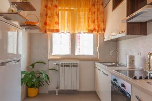 A kitchen or kitchenette at Apartment Marija