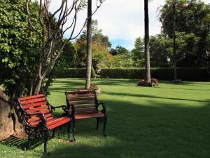A garden outside Hotel Racquet Cuernavaca