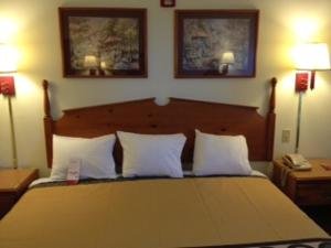A bed or beds in a room at Super 8 by Wyndham Pevely