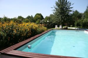 The swimming pool at or close to Jeleniec